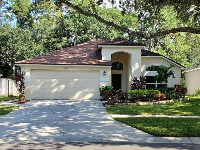 10440 Springrose Drive, Tampa, FL 33626 (MLS #U8137023) :: Team Bohannon