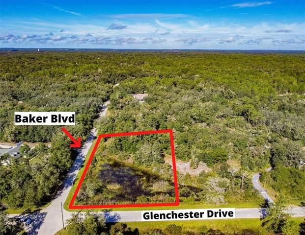 34471 Baker Boulevard, Webster, FL 33597 (MLS #U8137042) :: Team Turner