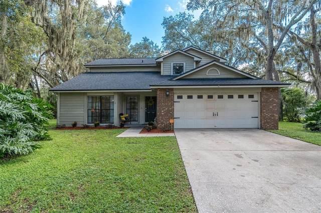 16605 Plum Rose Court, Tampa, FL 33618 (MLS #U8137062) :: Zarghami Group