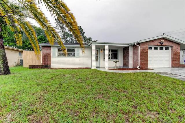 9010 Chantilly Lane, Port Richey, FL 34668 (MLS #U8137108) :: Zarghami Group
