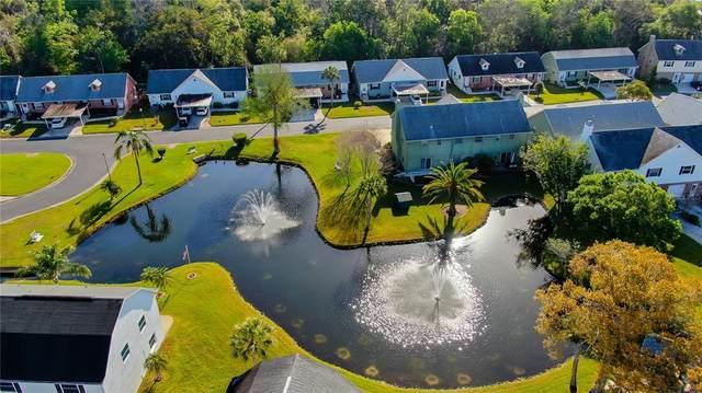 6645 Timbercove Lane, New Port Richey, FL 34653 (MLS #U8137117) :: Pristine Properties