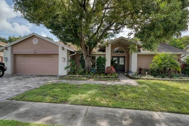 8729 Braxton Drive, Hudson, FL 34667 (MLS #U8137145) :: Global Properties Realty & Investments
