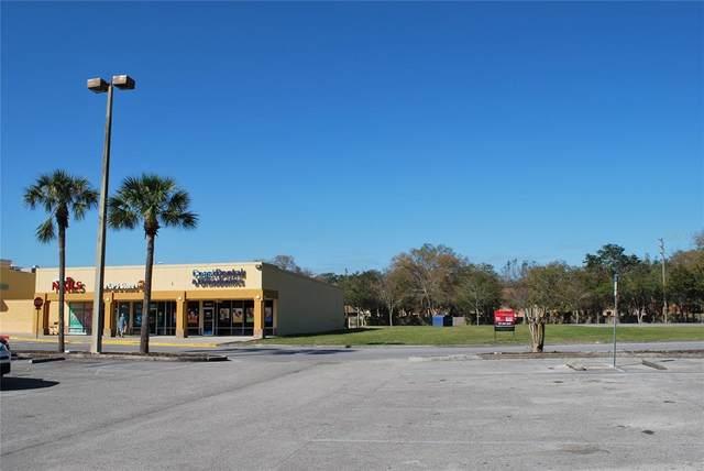 12125 Little Road, Hudson, FL 34667 (MLS #U8137154) :: The Duncan Duo Team