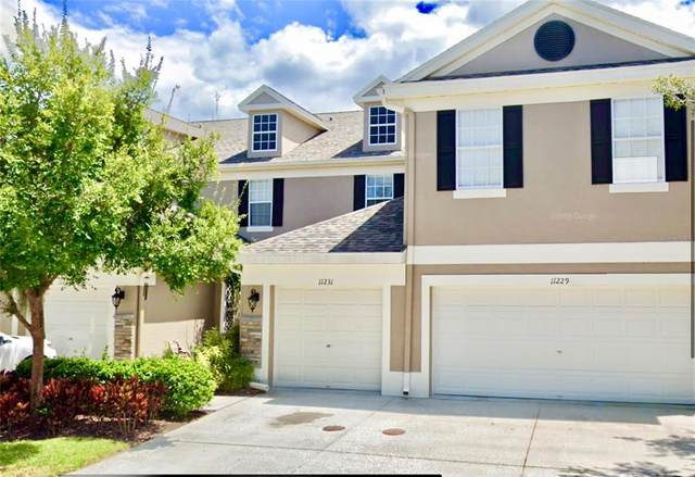 11231 Windsor Place Circle, Tampa, FL 33626 (MLS #U8137184) :: Zarghami Group