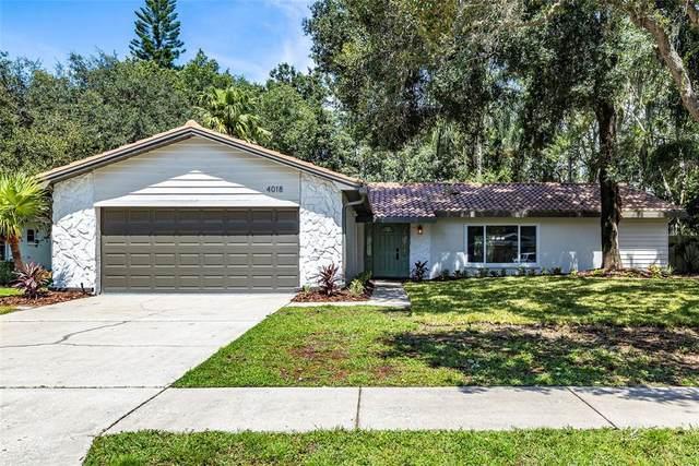 4018 Sandpiper Court, Palm Harbor, FL 34684 (MLS #U8137188) :: Everlane Realty