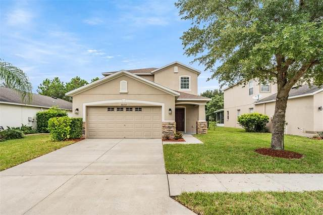 30737 White Bird Avenue, Wesley Chapel, FL 33543 (MLS #U8137191) :: Zarghami Group