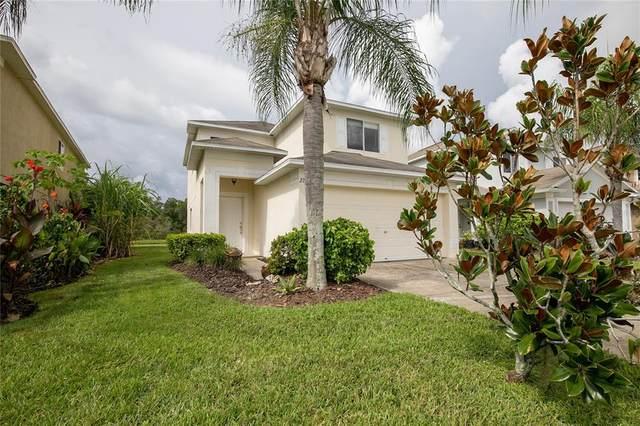 27128 Big Sur Drive, Zephyrhills, FL 33544 (MLS #U8137217) :: Pristine Properties