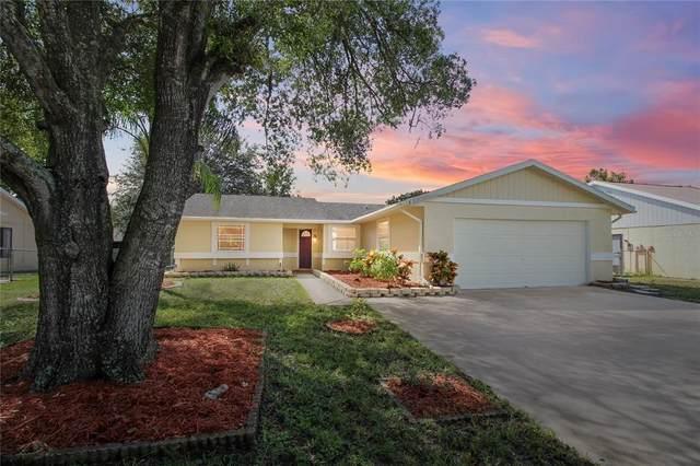 8103 Banister Lane, Port Richey, FL 34668 (MLS #U8137239) :: Cartwright Realty