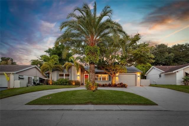 12410 Partridge Hill Row, Hudson, FL 34667 (MLS #U8137278) :: Visionary Properties Inc