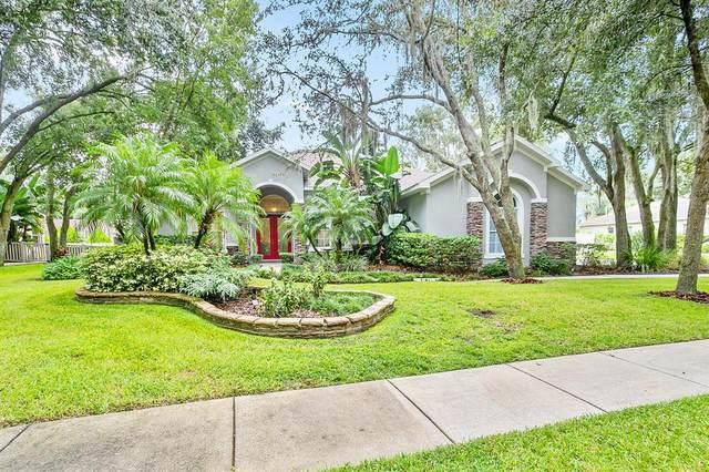 4202 Walden View Drive, Brandon, FL 33511 (MLS #U8137286) :: Zarghami Group