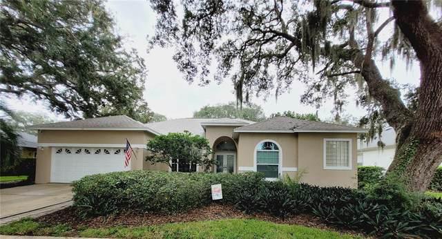 711 Waterview Lane, Tarpon Springs, FL 34689 (MLS #U8137288) :: Southern Associates Realty LLC