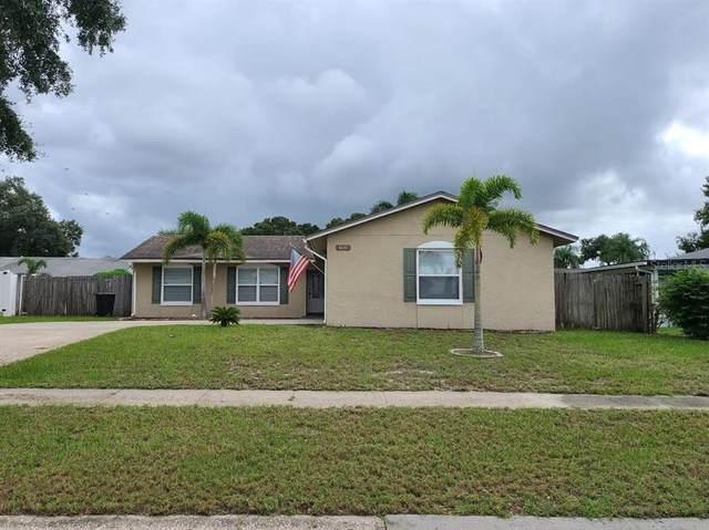 1839 Seton Drive, Clearwater, FL 33763 (MLS #U8137381) :: Cartwright Realty