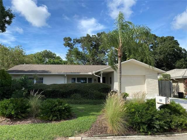 2915 Kenmore Place, Palm Harbor, FL 34684 (MLS #U8137404) :: Cartwright Realty