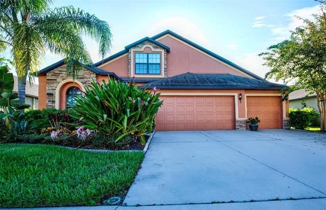 9206 Raes Creek Place, Palmetto, FL 34221 (MLS #U8137418) :: Bustamante Real Estate