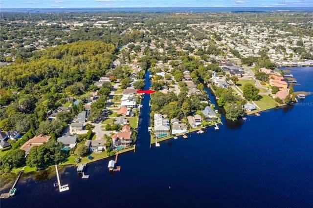 3140 N Canal Drive, Palm Harbor, FL 34684 (MLS #U8137447) :: The Truluck TEAM