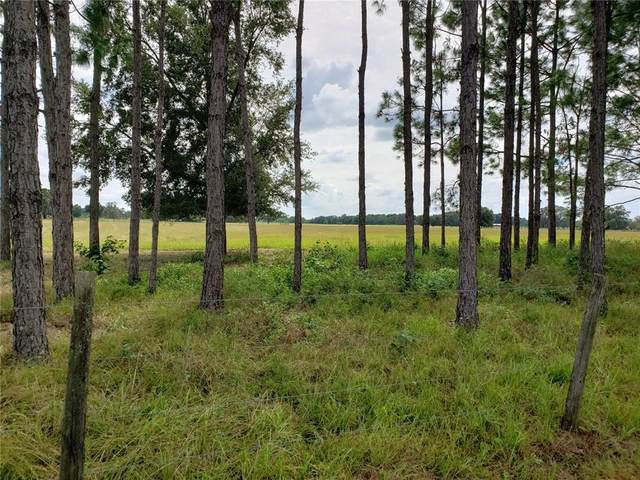 Brooksville, FL 34604 :: Vacasa Real Estate