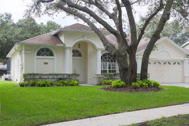 5606 Macallan Dr, Tampa, FL 33625 (MLS #U8137525) :: Cartwright Realty