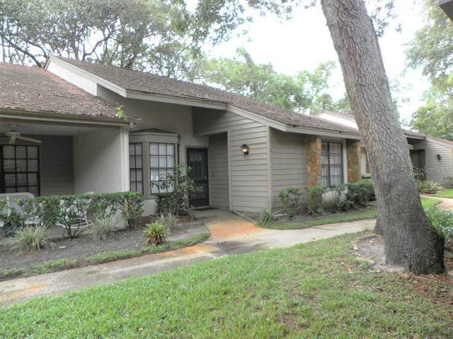 2117 Point O Woods Court, Spring Hill, FL 34606 (MLS #U8137528) :: Team Turner
