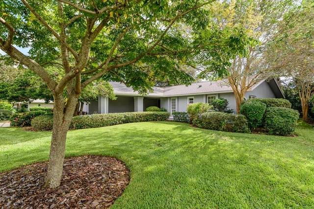 Clearwater, FL 33761 :: Zarghami Group
