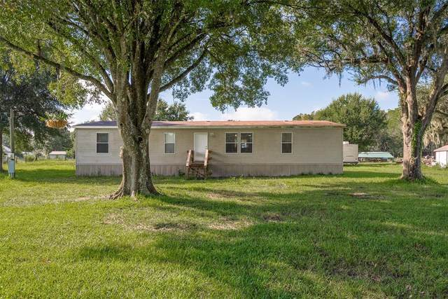 2050 Ranchland Acres Road, Lakeland, FL 33809 (MLS #U8137541) :: Zarghami Group