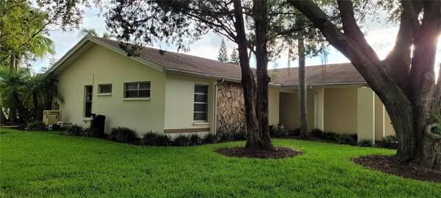 1109 Pelican Place, Safety Harbor, FL 34695 (MLS #U8137580) :: Lockhart & Walseth Team, Realtors