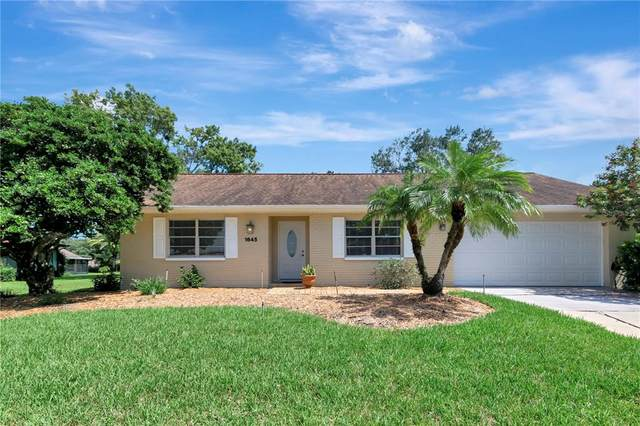 1645 Caledonia Drive, Palm Harbor, FL 34684 (MLS #U8137588) :: Zarghami Group