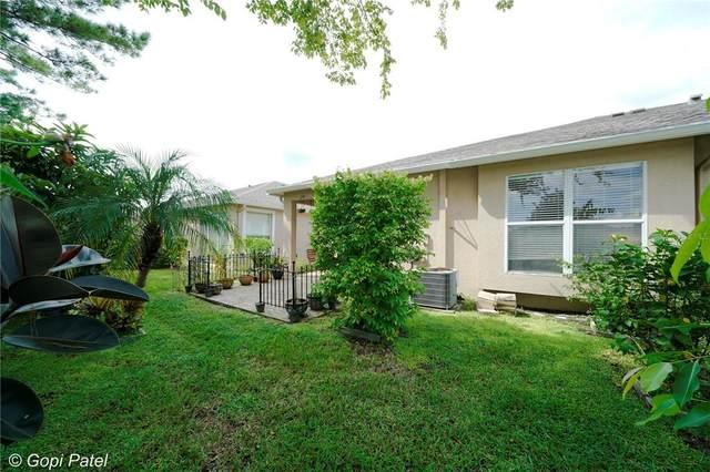 31443 Shaker Circle, Wesley Chapel, FL 33543 (MLS #U8137598) :: Zarghami Group