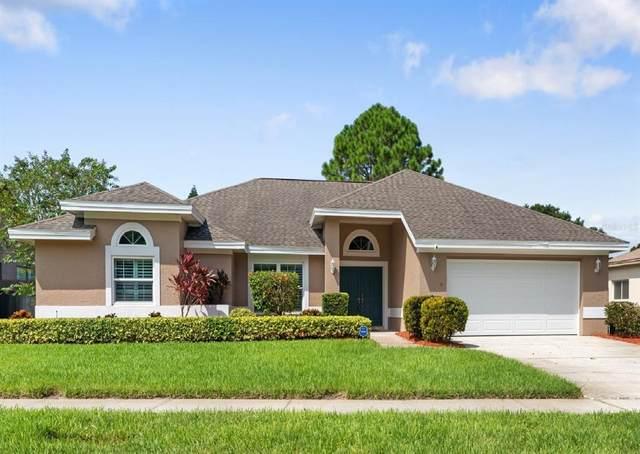 2782 Scobee Drive, Palm Harbor, FL 34683 (MLS #U8137603) :: Pepine Realty