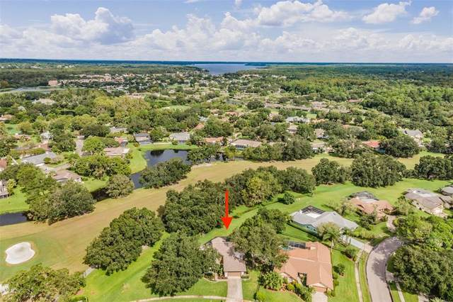 435 Forest Park Road, Oldsmar, FL 34677 (MLS #U8137642) :: RE/MAX Marketing Specialists