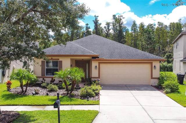 9207 Oak Pride Court, Tampa, FL 33647 (MLS #U8137687) :: Cartwright Realty