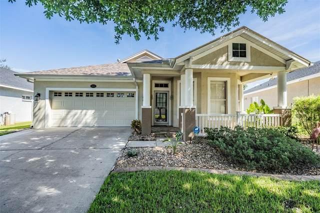 18035 Lake Reflections Boulevard, Lutz, FL 33558 (MLS #U8137695) :: Team Pepka