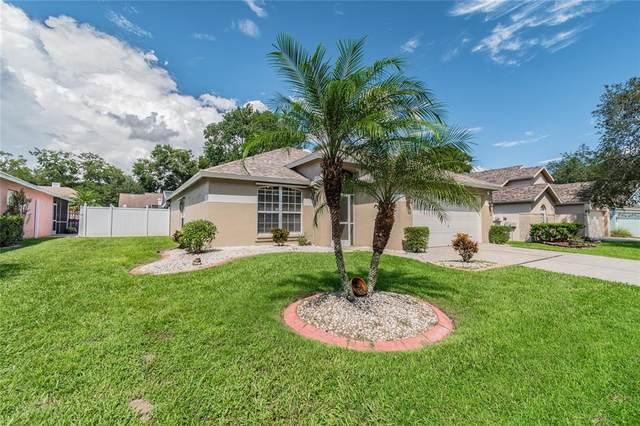 5207 Watson Road, Riverview, FL 33578 (MLS #U8137696) :: Cartwright Realty