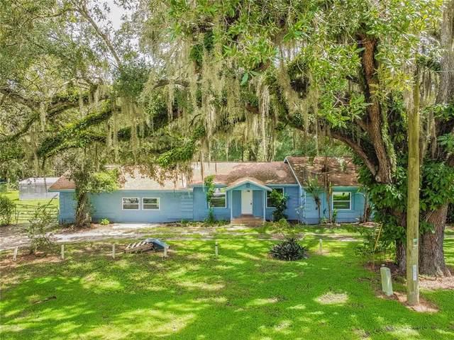 6901 Williams Road, Seffner, FL 33584 (MLS #U8137719) :: Pepine Realty
