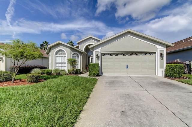 11603 Mcleod, Spring Hill, FL 34609 (MLS #U8137766) :: Dalton Wade Real Estate Group