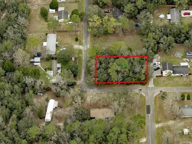 3927 S Millston Point, Homosassa, FL 34448 (MLS #U8137774) :: Zarghami Group