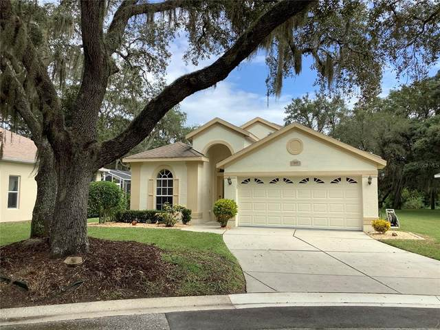 16501 Sandhill Crane Drive, Spring Hill, FL 34610 (MLS #U8137785) :: Vacasa Real Estate
