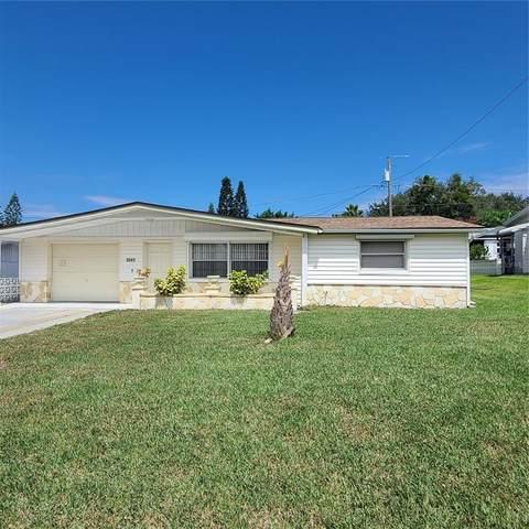 5041 Chet Drive, New Port Richey, FL 34652 (MLS #U8137792) :: Team Turner