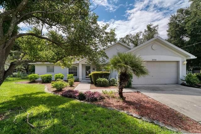 2334 Danforth Road, Spring Hill, FL 34608 (MLS #U8137813) :: Your Florida House Team