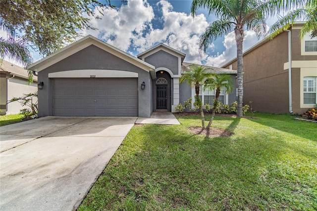 3032 Gianna Way, Land O Lakes, FL 34638 (MLS #U8137843) :: Your Florida House Team