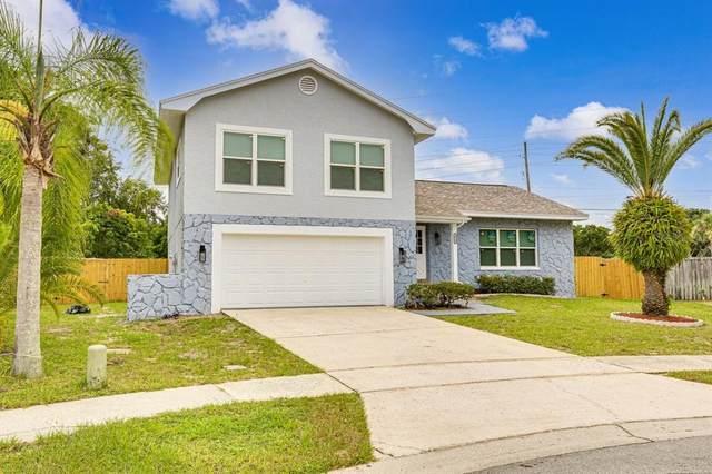 2354 Grove Ridge Drive, Palm Harbor, FL 34683 (MLS #U8137848) :: Globalwide Realty