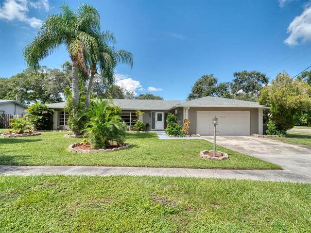 904 Richards Avenue, Clearwater, FL 33755 (MLS #U8137863) :: Century 21 Professional Group