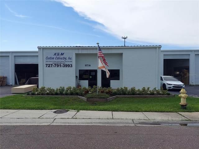 977 Withlacoochee Street 1-A, Safety Harbor, FL 34695 (MLS #U8137875) :: Zarghami Group