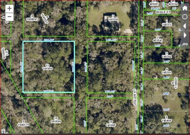 0 Zoller Street, Brooksville, FL 34601 (MLS #U8137882) :: Gate Arty & the Group - Keller Williams Realty Smart