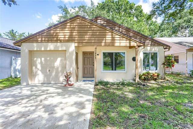644 Bellingham Place, Palm Harbor, FL 34684 (MLS #U8137893) :: Cartwright Realty
