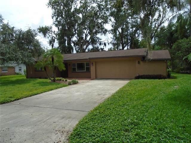 18822 Tracer Drive, Lutz, FL 33549 (MLS #U8137901) :: Team Bohannon