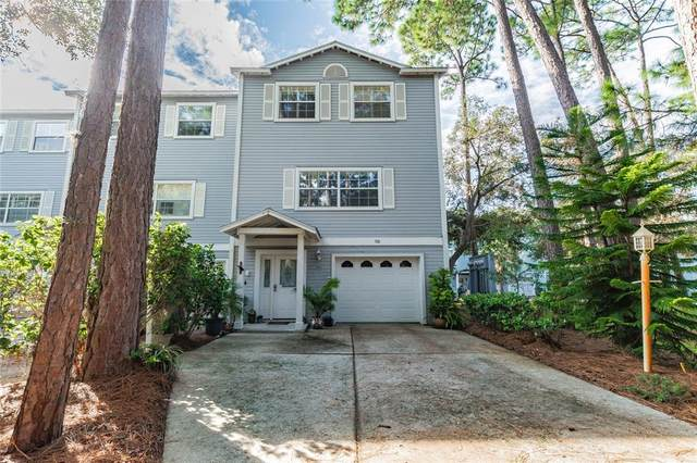 518 Ryans Woods Lane, Palm Harbor, FL 34683 (MLS #U8137931) :: Zarghami Group