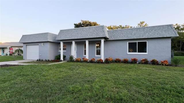 1017 Pinegrove Drive, Brandon, FL 33511 (MLS #U8137988) :: Pepine Realty