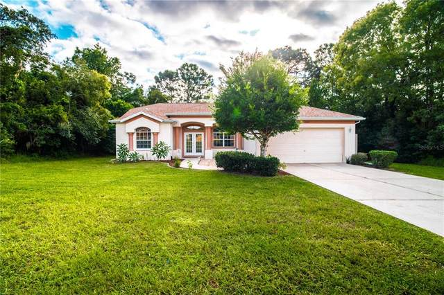 2468 Amherst Avenue, Spring Hill, FL 34609 (MLS #U8138023) :: Gate Arty & the Group - Keller Williams Realty Smart
