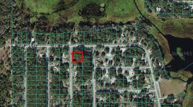 Southwind Drive, Dunnellon, FL 34431 (MLS #U8138062) :: Dalton Wade Real Estate Group