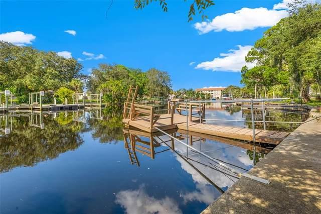 6031 Lafayette Street, New Port Richey, FL 34652 (MLS #U8138099) :: GO Realty